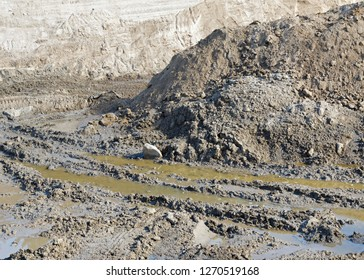 Large mound of dirt at construction site. Wet muddy soil in foreground.