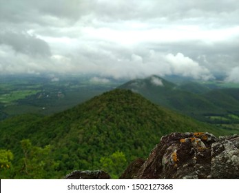 A large mountain rich in lush green forest, looking far ahead, with rocky cliffs resting. Above is a sky filled with fog and many white clouds floating, giving the feeling of fresh morning air.