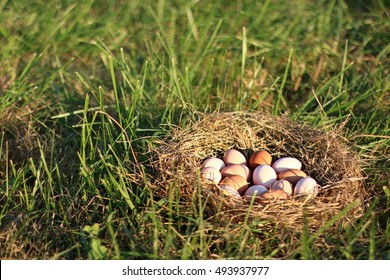 Large Nest Of All Natural Brown, Pink, And Speckled Chicken Eggs Nestled In Golden Hay IN Open Pasture On A Farm in The Mountains Of South West Virginia