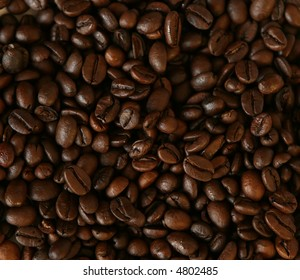 large number of fresh coffee beans
