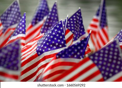 large numbers of American flags as a tribute