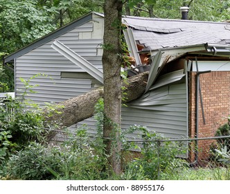 A large oak tree falls on and destroys a small house
