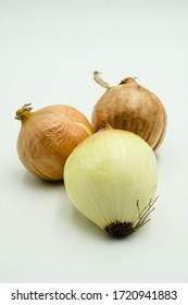 Large Onion or Allium cepa var. cepa , shots on isolated white background.