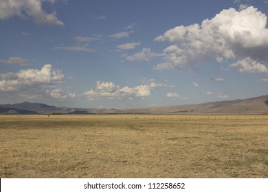 Large open field with clouds in the sky