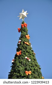 A large outdoor Christmas tree against a bright blue sky.