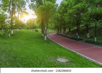 Large park in the city with beautiful views in the summer morning