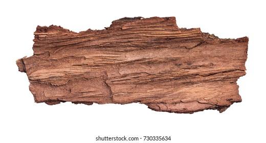 Large piece of bark inside isolated white background