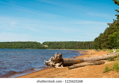 Large piece of driftwood in Batchewana Provincial Park on Lake Superior in Ontario