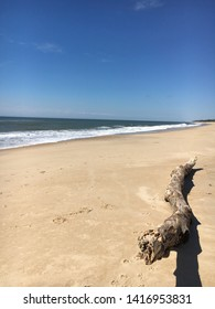 A large piece of driftwood on the beach at Montauk, Long Island, NY.