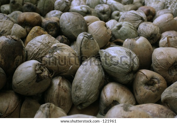 large pile of dried coconuts