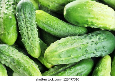 large pile of freshly green cucumbers.close up