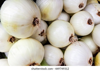 A large pile of organic white onions at a local farmers market.