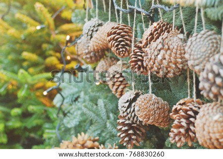 large pine cones like christmas decorations on a background of green spruce closeup photo - Decorating Large Pine Cones For Christmas