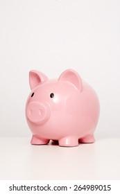 Large pink piggy bank in studio