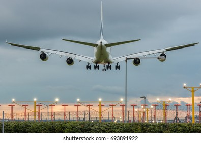 Large plane landing on the airport at sunset time