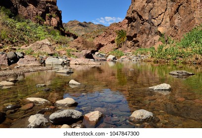 Large puddle with natural water after the rains, ravine of Tirajana, Gran canaria, Canary islands