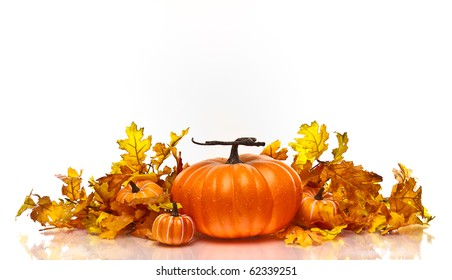 Large pumpkin centered on a white background surrounded by leaves and small pumpkins.