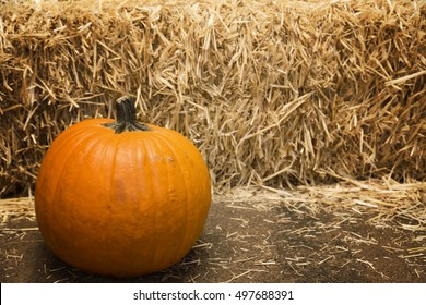 Large pumpkin with hay background