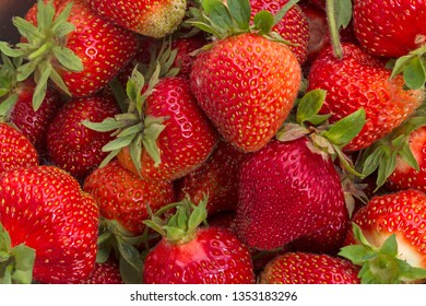 Large ripe strawberries. Natural background