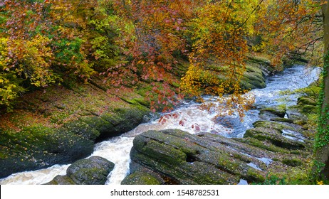 Large rocks in the river bed with Autum trees over hanging