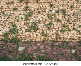 a large rough textured irregular light brown stone wall with green foliage growing between the cracks