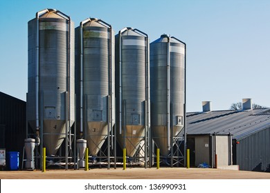 large scale commercial chicken farm with four grain storage silos for the storage of poultry feed
