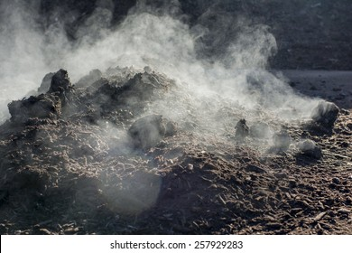 Large scale organic compost production.