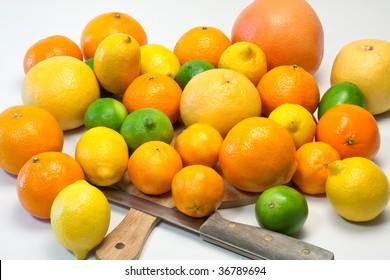 Large selection of citrus fruit