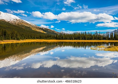 Large shallow lake surrounded by forest. Rocky Mountains on a sunny autumn day. The concept of ecotourism