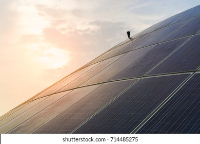 Large Solar Panels and Sky in Background.