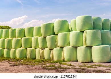Large stacked green bales with dried grass as winter feed for the cows. It is in the middle of a warm summer day in the Netherlands. The sky is blue, almost windless  and the temperature is very high.