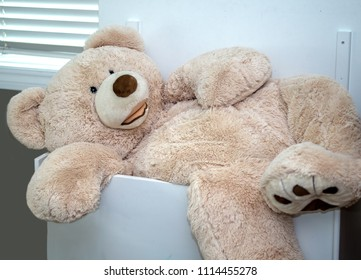 A large stuffed teddy bear tries to fit into a big wood ty box, but is still too big