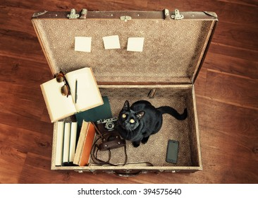 Large suitcase, set of hipster student traveler: books, retro camera, cell phone, sunglasses, notebook and black cat