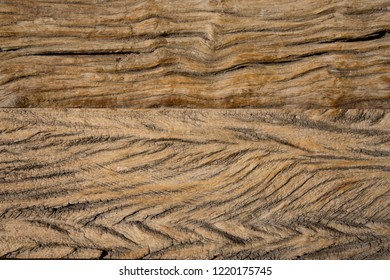 Large texture of old solid wood