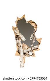 Large through hole in the door. Door damage from impact.