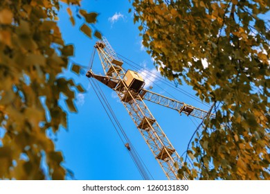 large tower crane between branches of autumn birches, blue sky and metal crane