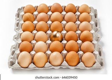 Large tray of eggs with one single gold egg in the group; isolated on white background