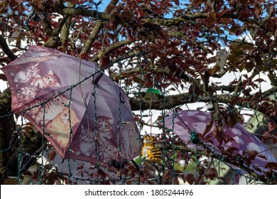 Large umbrellas decorated with cats and many small ornaments embellish a tree in a front yard of a Seattle home.