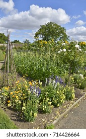 A large vegetable garden with mixed planting of vegetables and flowers