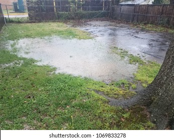 large water puddle in the lawn