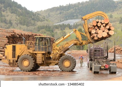 A large wheeled front end log loader unloading a log truck at a log yard at a lumber processing mill that specializes in small logs