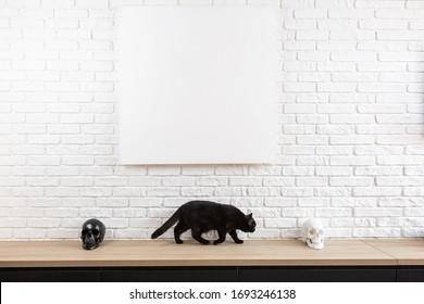 große weiße Ziegelwand und Leinwand in der Mitte mit Platz für Text. Holztisch mit weißen und schwarzen Schädeln und schwarzer Katze, der zwischen ihnen hin- und hergeht. Poster in der Lounge aufstellen