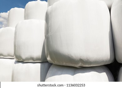 Large white stacked bales of hay with  blue sky.