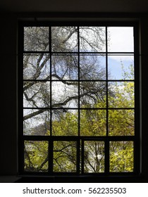 Large window divided into square frames. Trees and blue sky are visible outside. Abstract architecture / interior background with checkered structure.