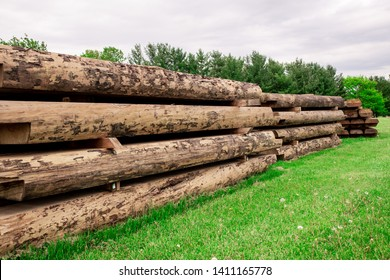 Large Wood Lumber Pile with Logs for Building.