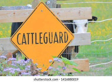 A large yellow sign posts in English that the fence has a cattle guard. An electrified system to keep bystanders and animals safely distanced.