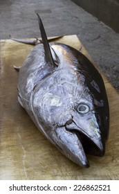 Large yellowfin tuna (shallow depth of field, focus on head) at a fish market in Sicily, Italy.