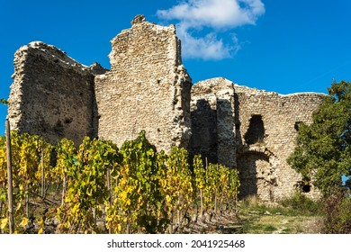 Larnage castle ruins with grape vines on the foreground in french Drome region during autumn season.
