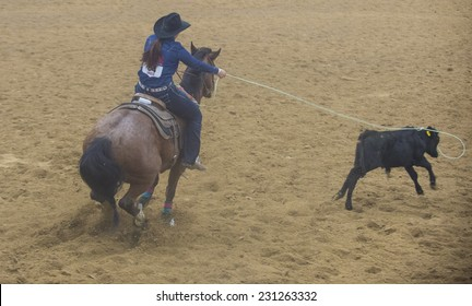 LAS VEGAS - NOV 05 : Cowgirl Participating in a Calf roping Competition at the Indian national finals rodeo held in Las Vegas, Nevada on November 05 2014