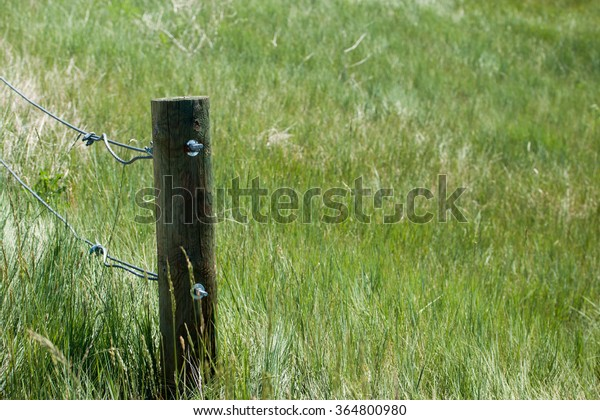 last fence post in a grassy field